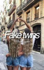 Fake Twins  by loladne