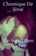 Chronique d'une gitane : un secret bien cacher  by chronique_voyageuse