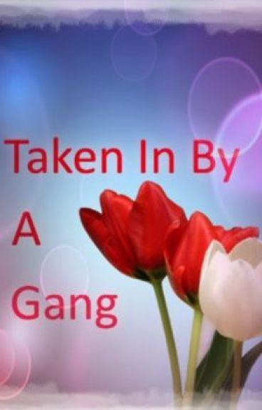 Taken In By A Gang.