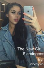 The New Girl || Flamingeos by larveyxo