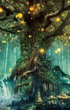 Magical Forest-Khu Rừng Cổ Tích Magicalia by Yuki_Kiseki
