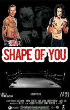 Shape Of You (L.S) by louistyls1