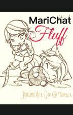MariChat Fluff|| A MariChat Fanfiction Fluff|| by RareNopeMaster250