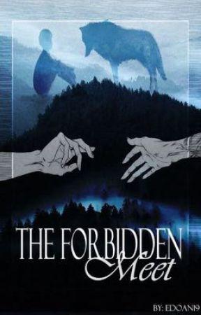 The Forbidden Meet by edoan22