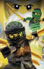 Don't mess with the popstar (Ninjago x Reader) by Death_Dule