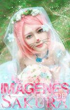 Imágenes de Sakura Haruno by -Narux