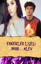 ERKEKLER LİSESİ (MOR ALEV) by melk_ecrn12
