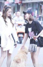 [Fanfic SNH48] Thất Ngũ Chiết - Cherry Blossom by _ZuuZ_