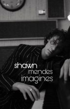 Shawn Mendes Imagines/ In Editing  by mutual_mendes