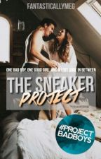 The Sneaker Project [ON HOLD] by fantasticallymeg_