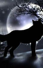 A Wolf's Eternity by warriorknight