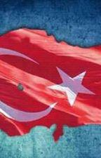 AŞK YOLUNDA by yunusdas2