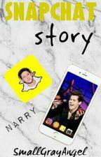 Snapchat Story | Narry. [ZAWIESZONE] by SmallGrayAngel