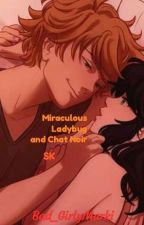 Miraculous Ladybug and Chat Noir SK by Bad_GirlyM