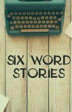 Six word stories by crazzyelsa555