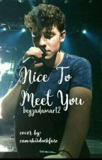 NICE TO MEET YOU|| SHAWN MENDES by beyzadamar12