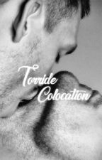 Torride Colocation [BoyxBoy] by sunwave