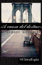.-A Causa Del Destino-. (OneShot Wigetta) by ChicaEspia