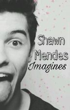 Shawn Mendes Imagines by textingmendess