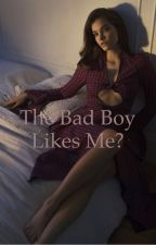 The BAD BOY LIKES ME?!? (MAJOR EDITING) by abc123xyzzzzzzzz