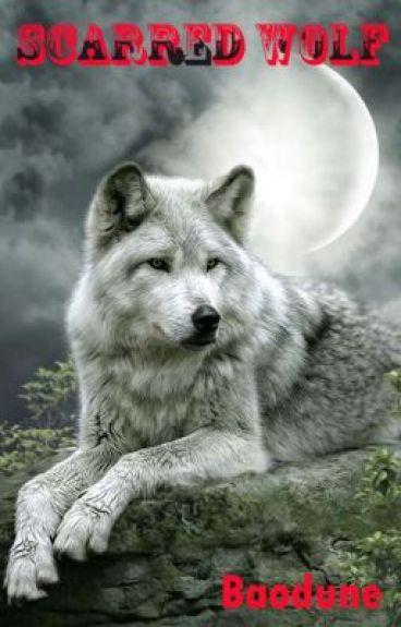 Scarred Wolf 18+ Version - Baodune - Wattpad