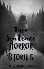 Two Sentence Horror Stories by Ava_Blake_Love