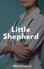 Little Shepherd #WATTYS2K18 by thewalkinggreys