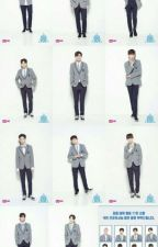 Wanna One Book 1 by youngmin_alpaca