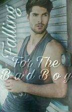 Falling For The Bad Boy- Nick Bateman Fanfic by breakerpws