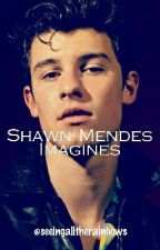Shawn Mendes Imagines by Newtmas_Caina_4life
