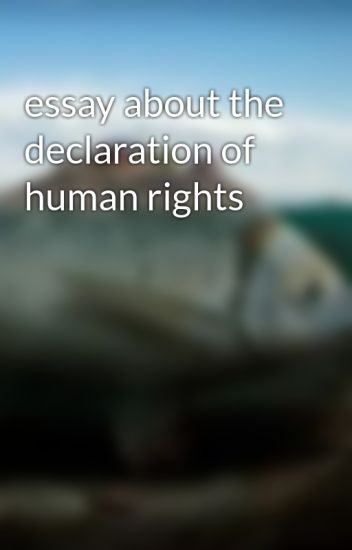 essay about the declaration of human rights