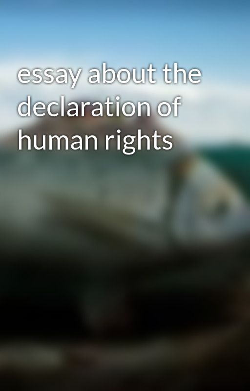 essay about the declaration of human rights by madalyn1011