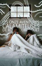 Les onze aventures calamiteuses de Robin Dubosquet by enfant-minuit