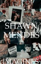 SHAWN MENDES IMAGINES  by melbournegal