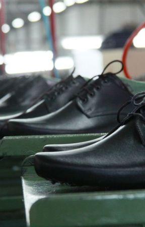 Men formal shoes market share by Kusum2017