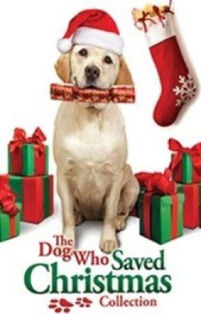 The Dog Who Saved Christmas.The Dog Who Saved Christmas Wattpad