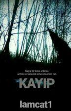 KAYIP // CAMREN by Iamcat1