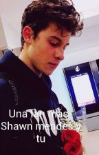 Una fan más -Shawn Mendes y tu  by Black-neud