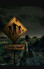 Zombie Apocalypse Roleplay by XxLittleEmoFurryxX