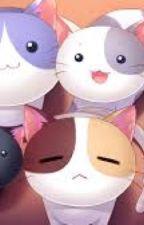 Cats, Music, Friendship //DORL  by depresso---