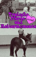 Typische Pferde- und Reitermomente by Alina_Goebel