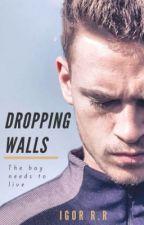 DROPPING WALLS  (MANXMAN) by IgorOrJack
