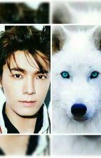 Encuentros Cambiaformas 01 - Compañero De Un Hombre Lobo [Eunhae] Adaptación by BaekTuDiosa