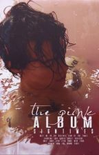 the pink album (h&l) by signtimes