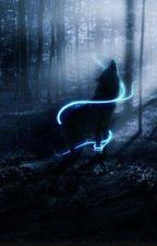 Den sorte ulv by PernilleOlsen0