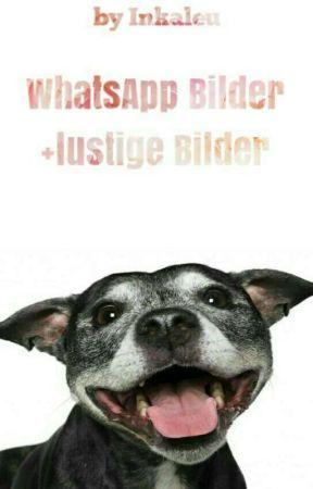 Whatsapp Chats Bilder Lustige Bilder 18 Wattpad