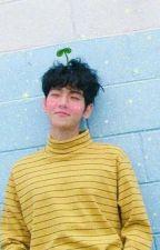 Number One Fan [HUN Chanbaek fic] by Momosbitch