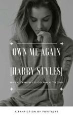Own Me Again |Harry Styles| by ErytaSky_