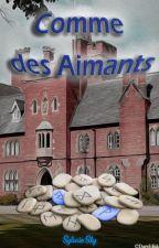 Comme des Aimants... by SylvainSky
