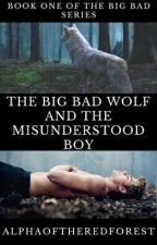 The Big Bad Wolf and the Misunderstood Boy by AlphaOfTheRedForest